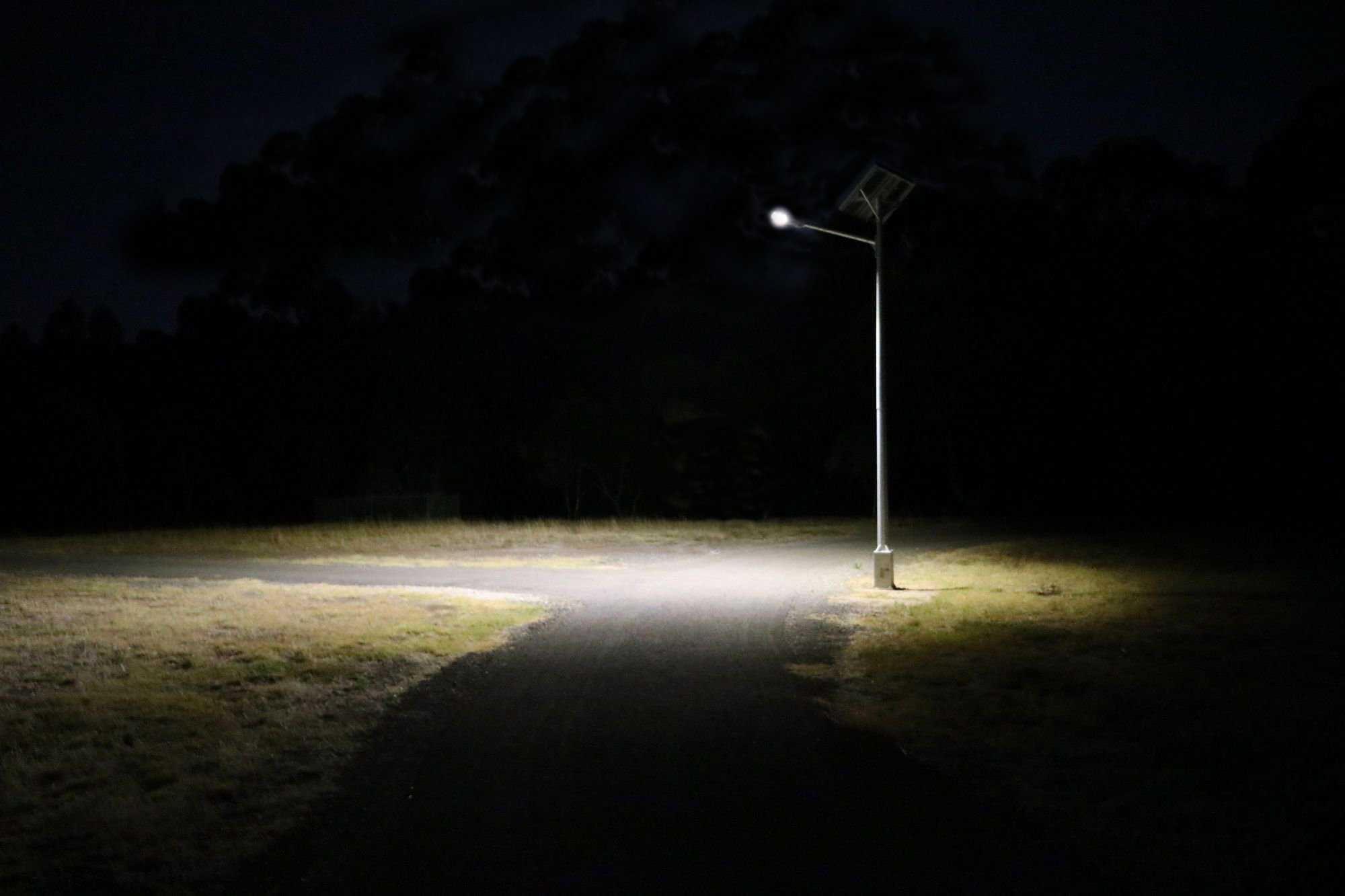 đèn đường lá liền 250w